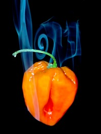 13 Smokin' Hot 2b