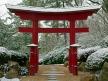 Snowy Torii