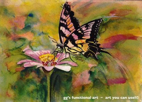 butterfly pink zinnia _100